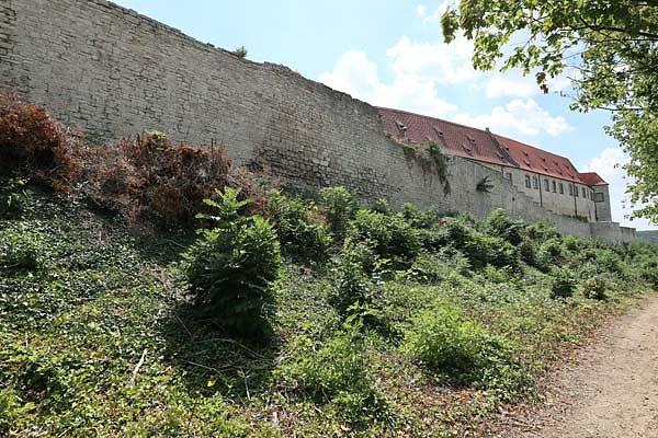 Schloss-Neuenburg-202.jpg