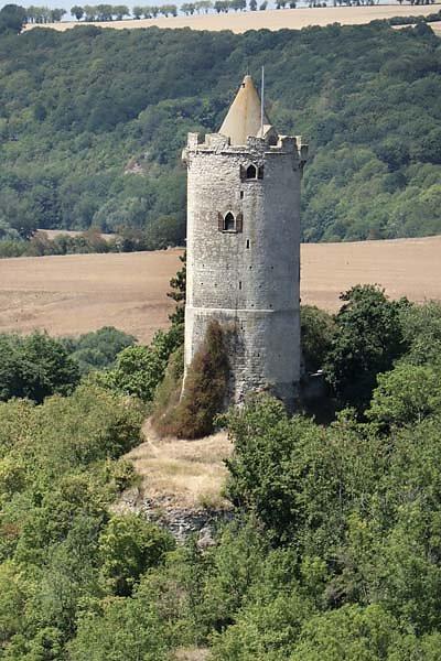 Burg-Saaleck-10.jpg