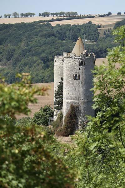 Burg-Saaleck-12.jpg