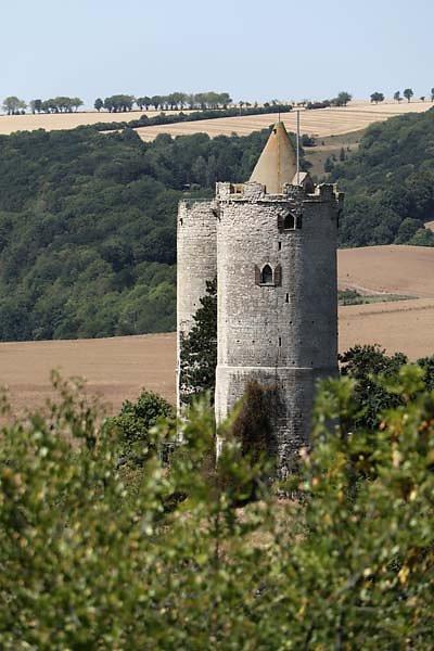 Burg-Saaleck-13.jpg