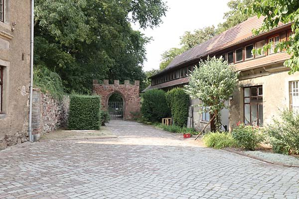 Burgruine-Giebichenstein-8.jpg