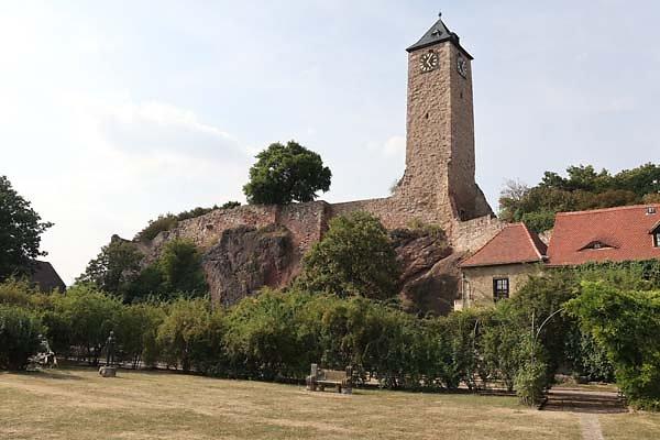 Burgruine-Giebichenstein-11.jpg