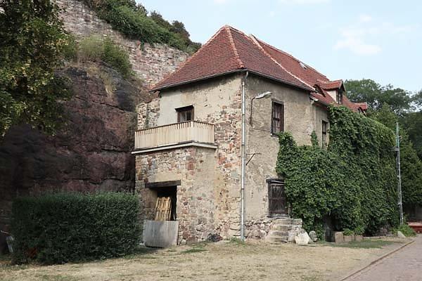 Burgruine-Giebichenstein-17.jpg