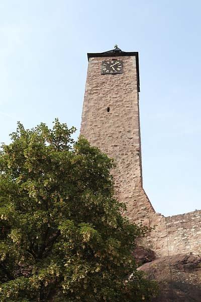 Burgruine-Giebichenstein-18.jpg