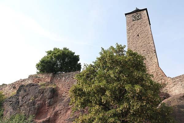 Burgruine-Giebichenstein-19.jpg