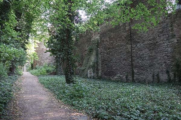 Burgruine-Giebichenstein-23.jpg