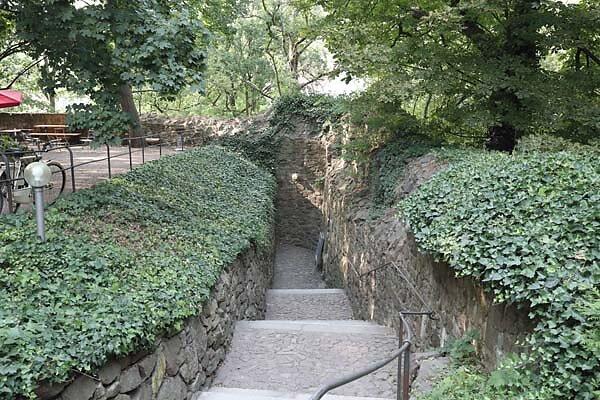 Burgruine-Giebichenstein-101.jpg