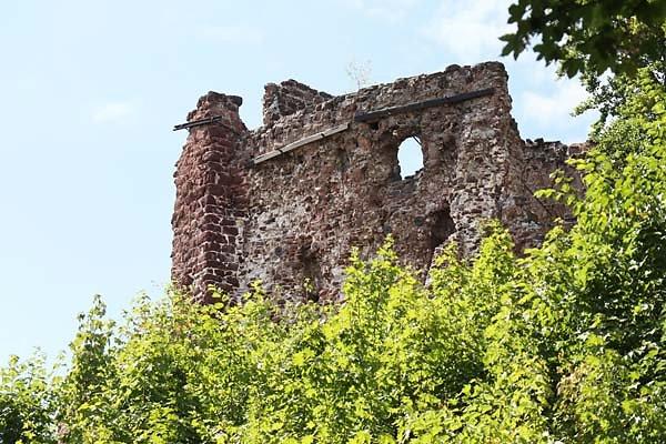 Burgruine-Hohnstein-3.jpg