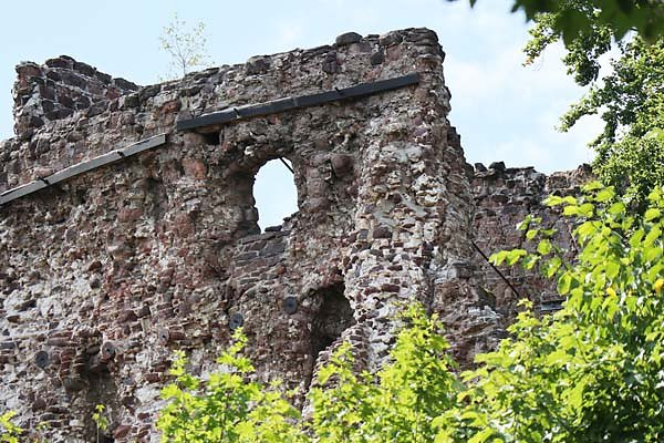 Burgruine-Hohnstein-5.jpg