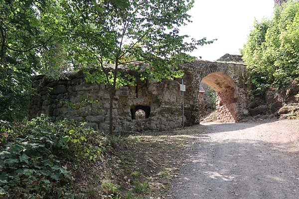 Burgruine-Hohnstein-6.jpg