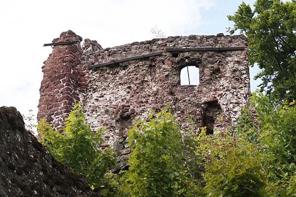 Burgruine-Hohnstein-10.jpg