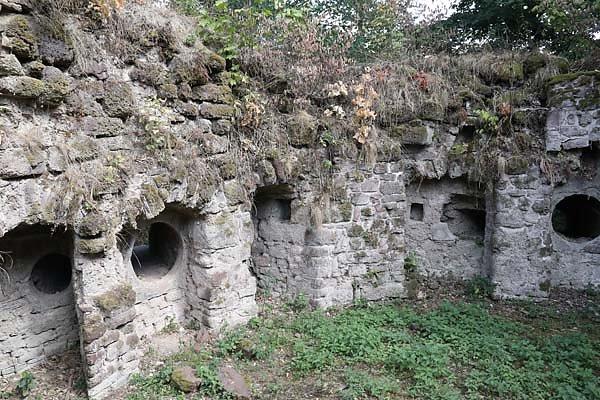 Burgruine-Hohnstein-11.jpg