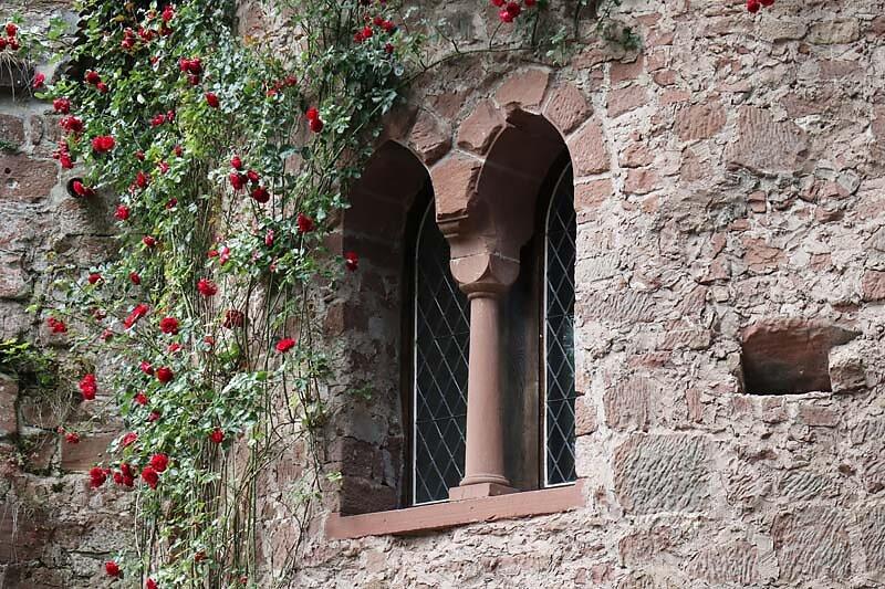 Burg-Berwartstein-14.jpg