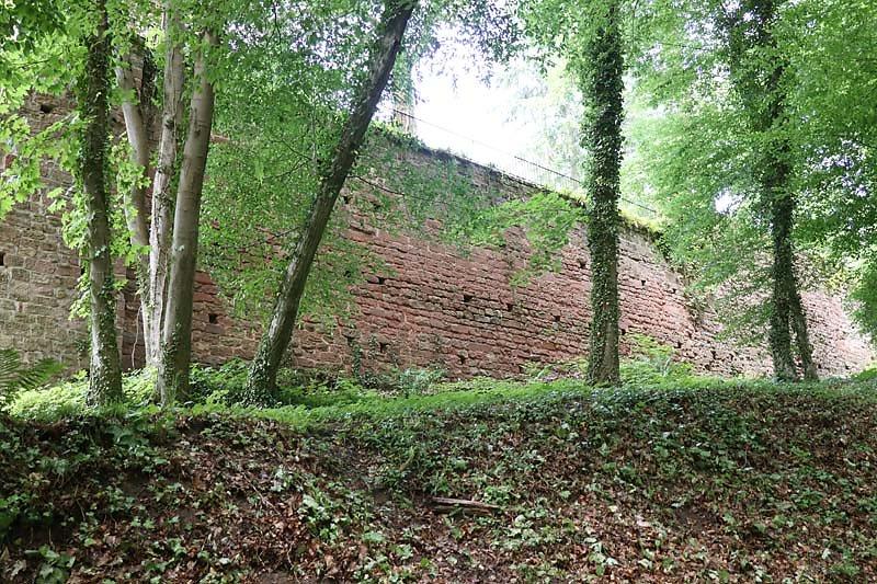 Burg-Berwartstein-3.jpg