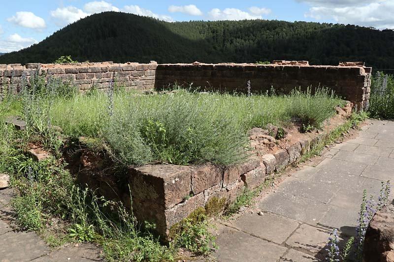 Burgruine-Drachenfels-79.jpg