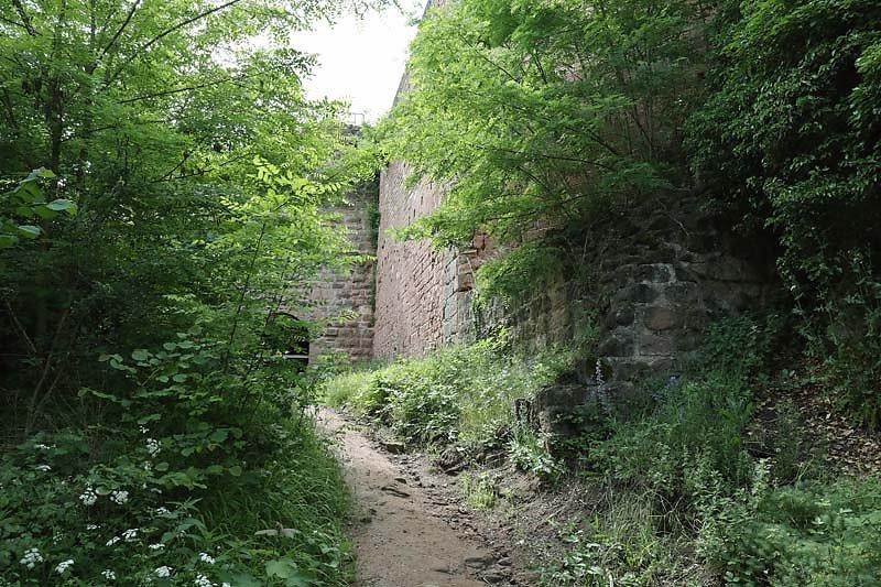 Burgruine-Drachenfels-5.jpg