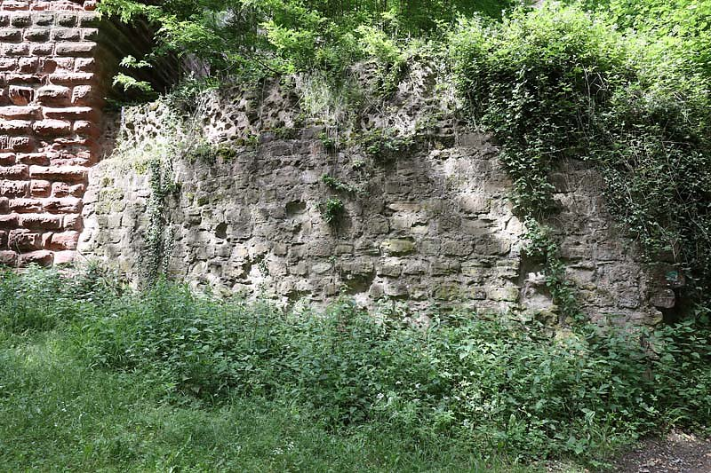Burgruine-Drachenfels-3.jpg
