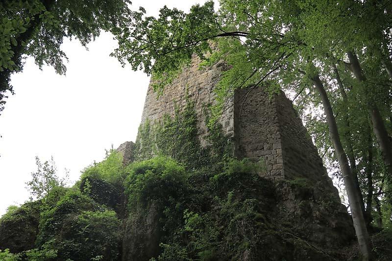 Burgruine-Tachenstein-7.jpg