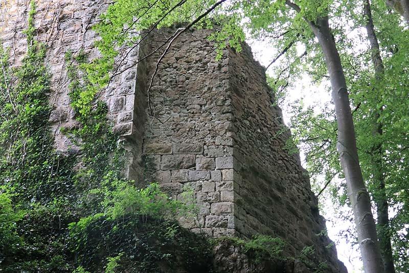 Burgruine-Tachenstein-8.jpg