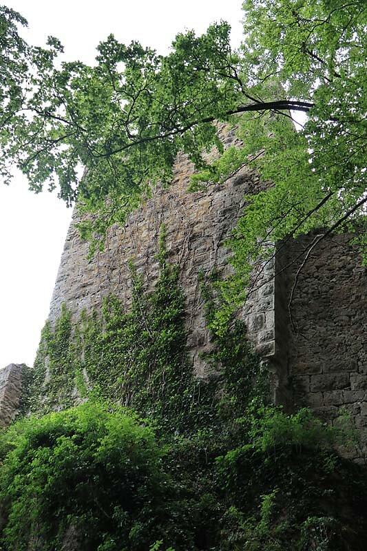 Burgruine-Tachenstein-9.jpg