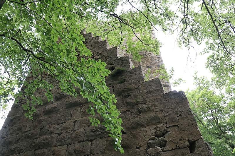 Burgruine-Tachenstein-11.jpg