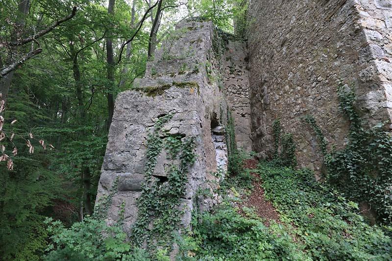 Burgruine-Tachenstein-13.jpg