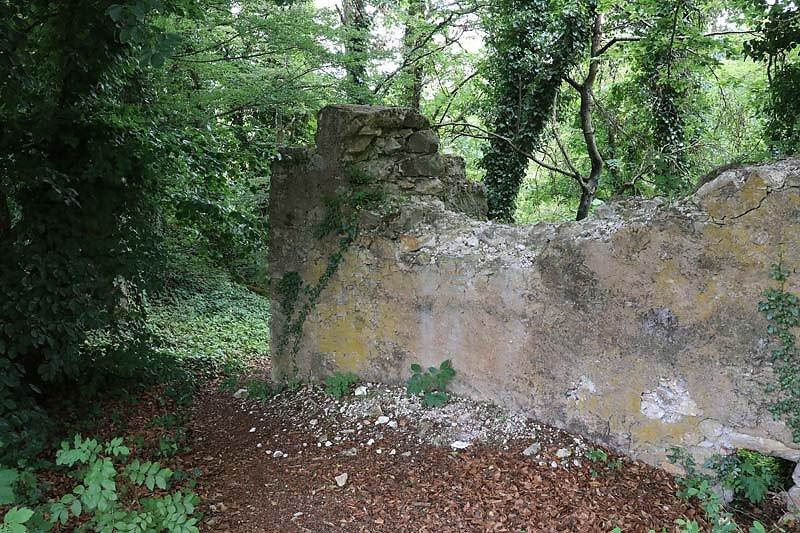 Burgruine-Tachenstein-16.jpg