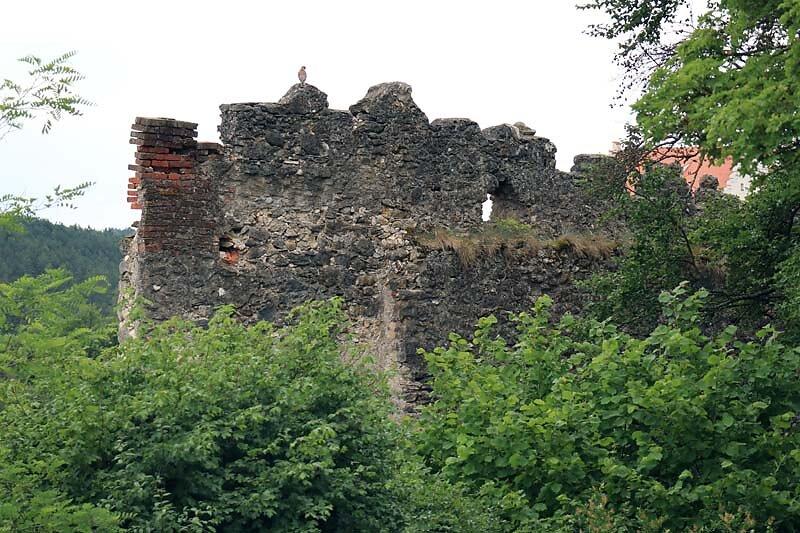 Burgruine-Tachenstein-20.jpg