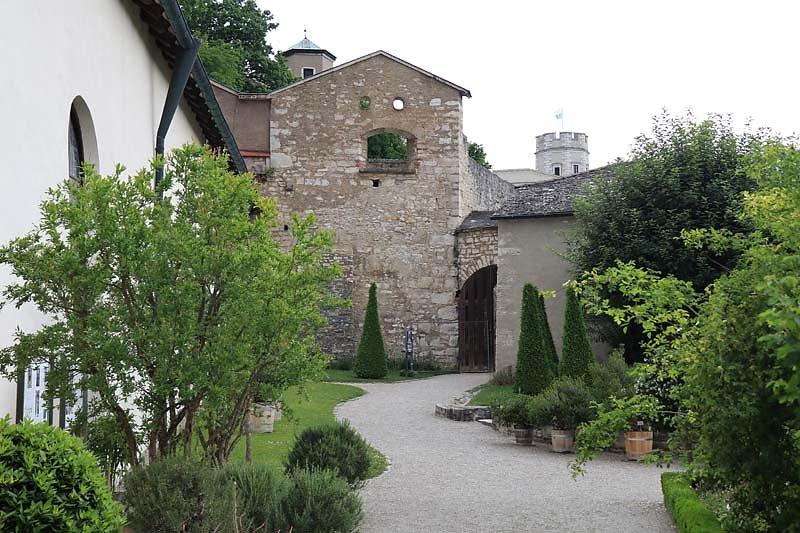 Burg-Wilibaldsburg-186.jpg