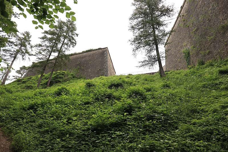 Burg-Wilibaldsburg-212.jpg