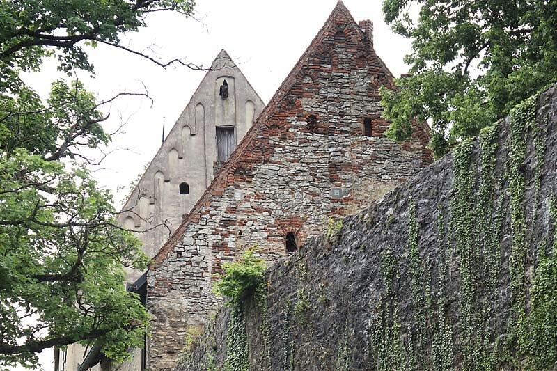 Burgruine-Pappenheim-7.jpg