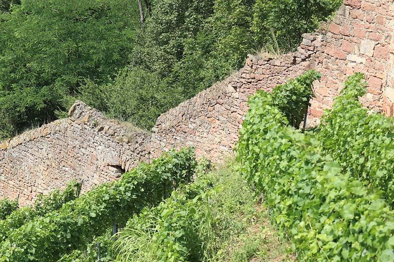 Burgruine-Clingenburg-16.jpg