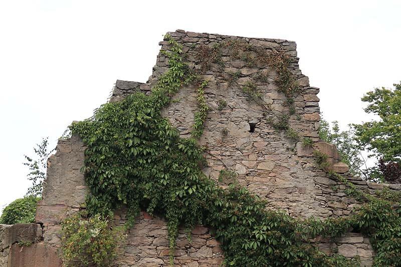 Klosterruine-Heilig-Grab-19.jpg