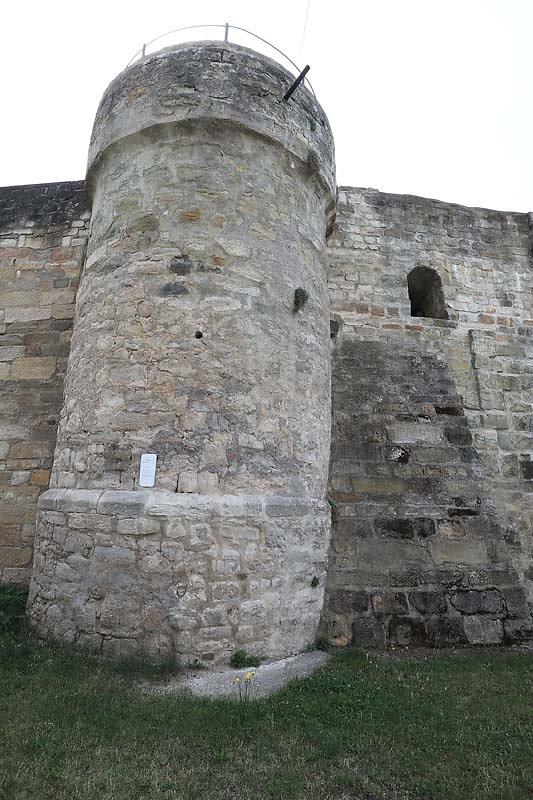 Burgruine-Koenigsberg-8.jpg