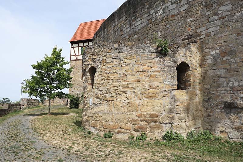 Burgruine-Koenigsberg-21.jpg
