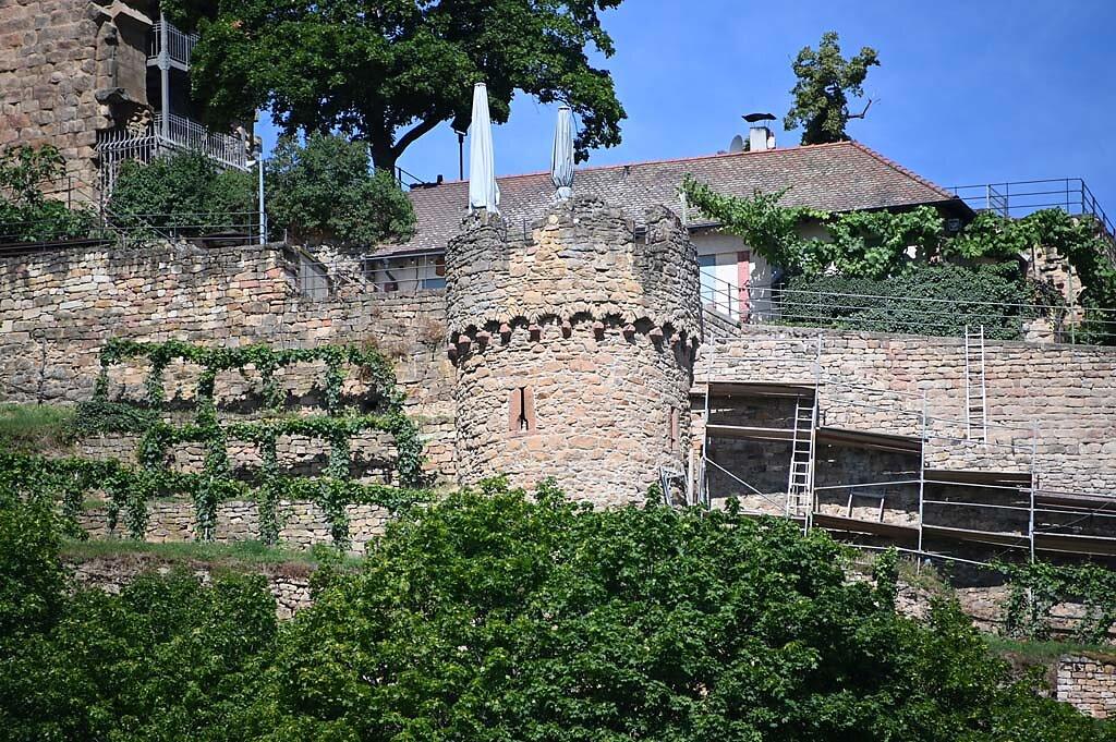 Wachenheim-7.jpg