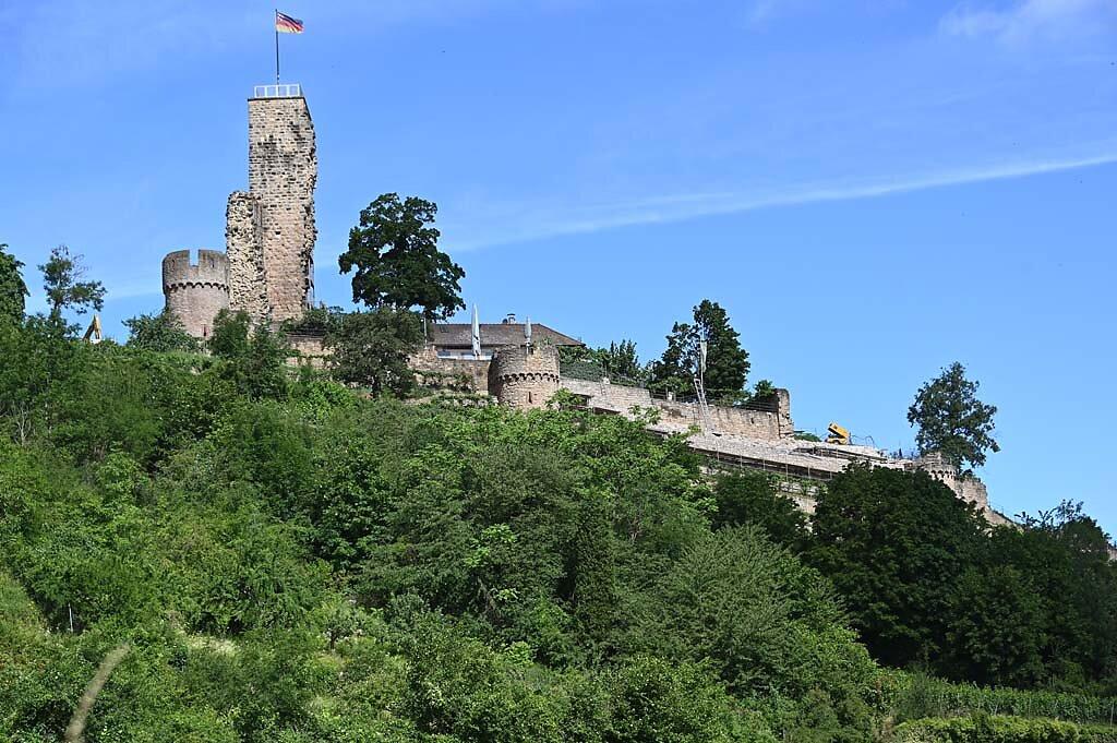Wachenheim-11.jpg