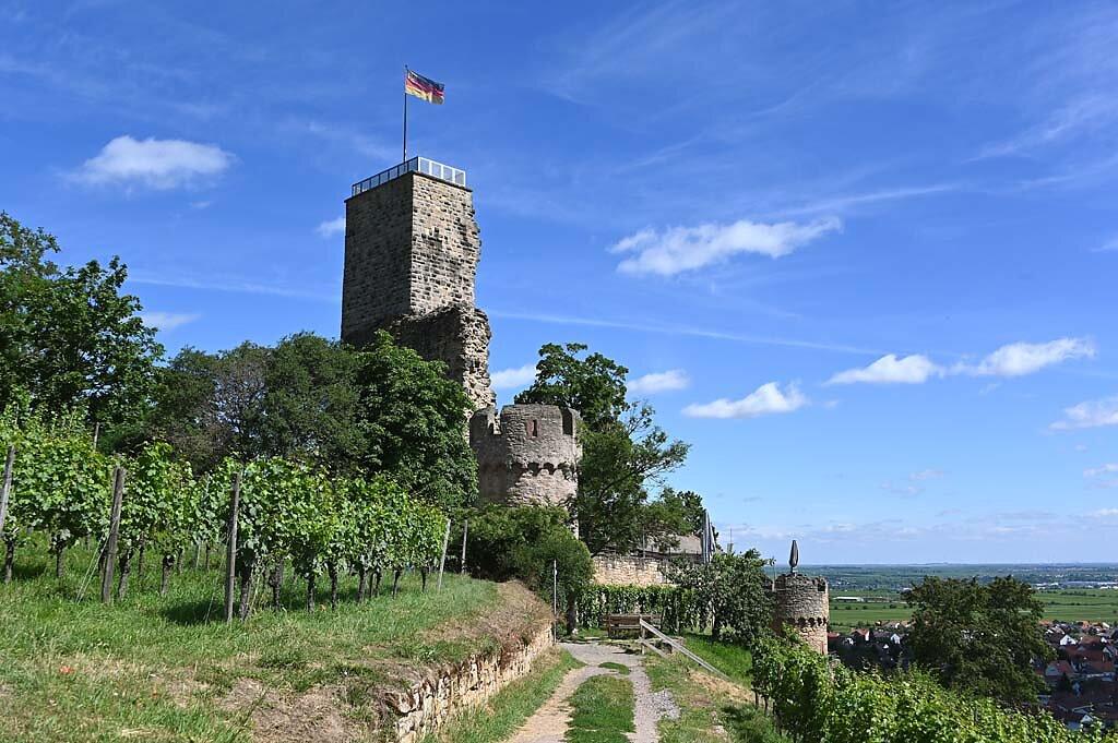 Wachenheim-18.jpg