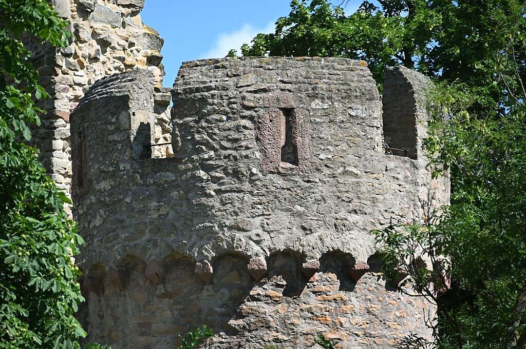 Wachenheim-19.jpg