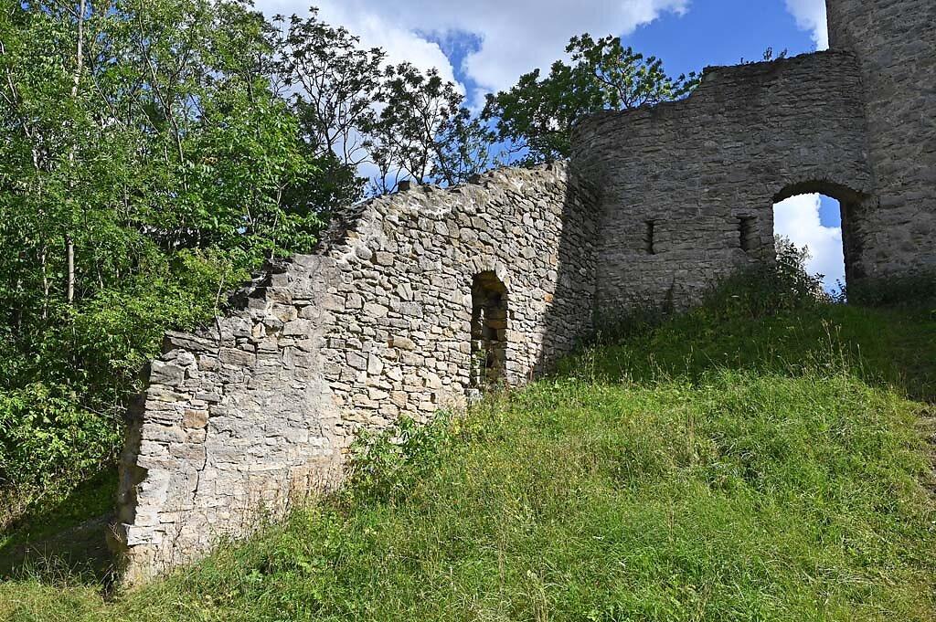 Ehrenstein-2.jpg