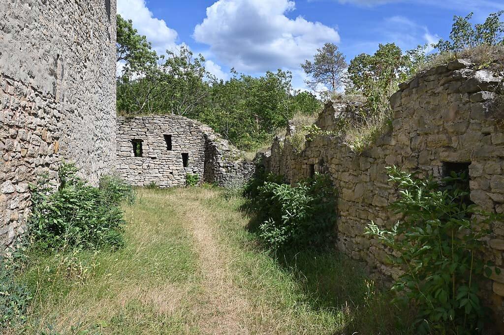 Ehrenstein-14.jpg
